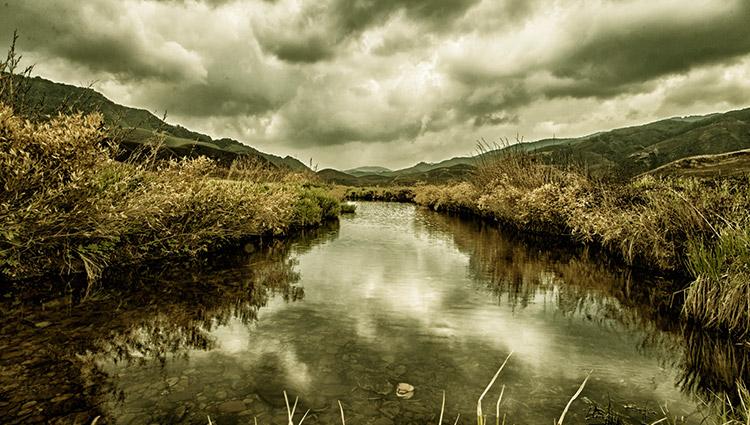zuko valley nagaland