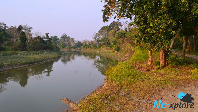 Lake inside Kaziranga National Park