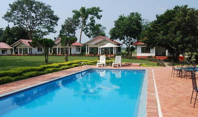 Kaziranga resort