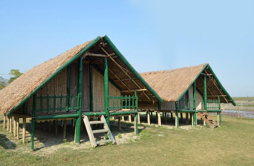 kohuwa eco camp, Dibru saikhowa national park accommodation