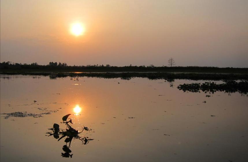 Dibru Saikhowa sunset, Dibru Saikhowa image