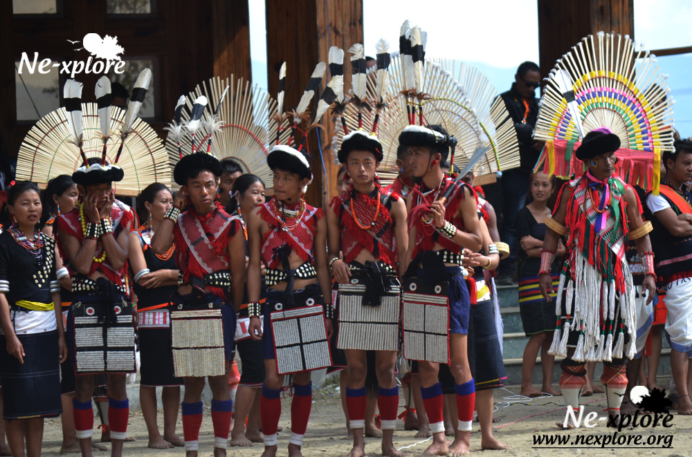 Tribal performer at Hornbill Festival, Nagaland