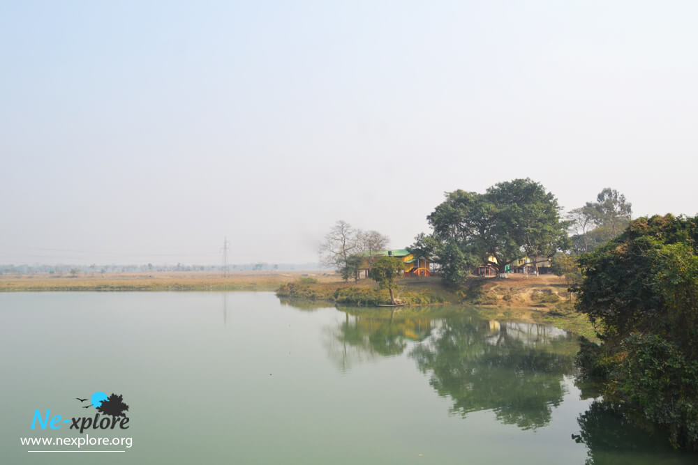 pobitora wildlife sanctuary